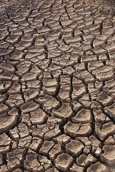 La grande sécheresse