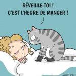 Quand tu vis avec des chats (22 nouvelles images)